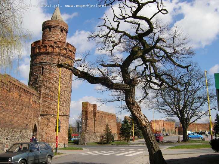 Совиная башня в Польше